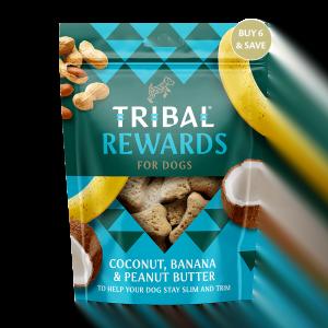 Tribal Rewards Kokosnoot