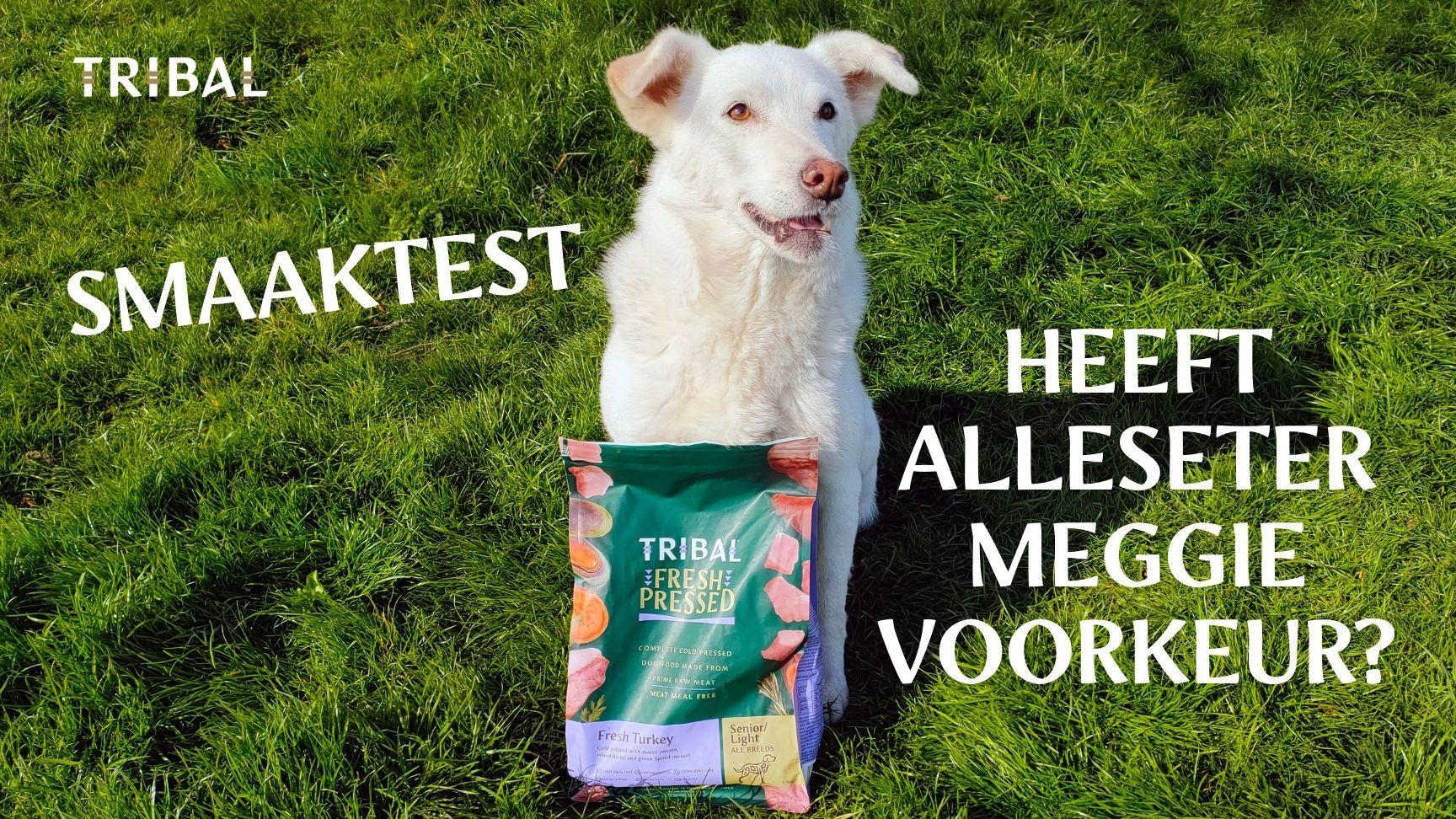 Smaaktest test senior hondenvoeding