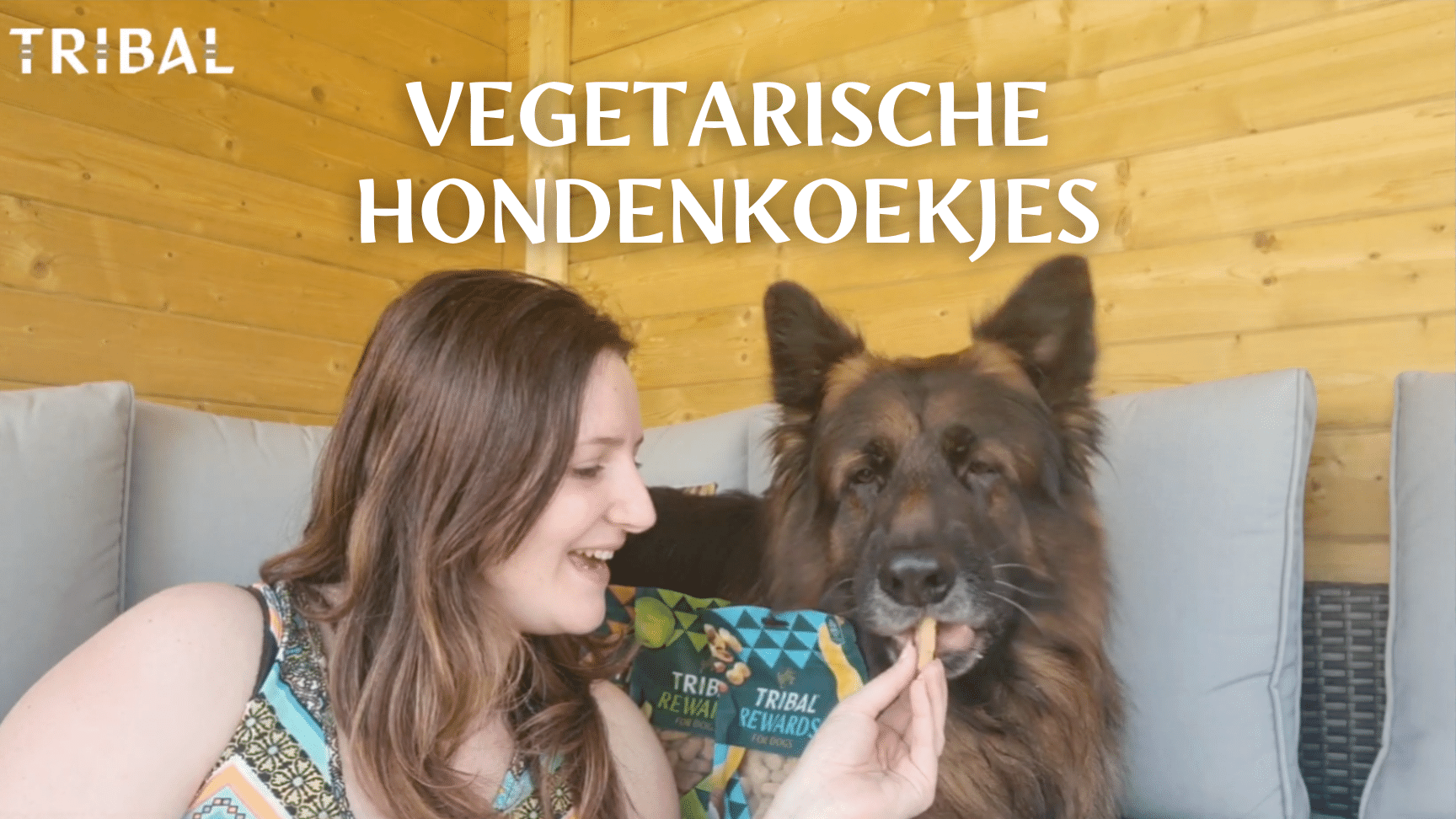 Vegetarische hondenkoekjes Tribal Rewards